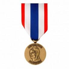 Médaille Protection du territoire