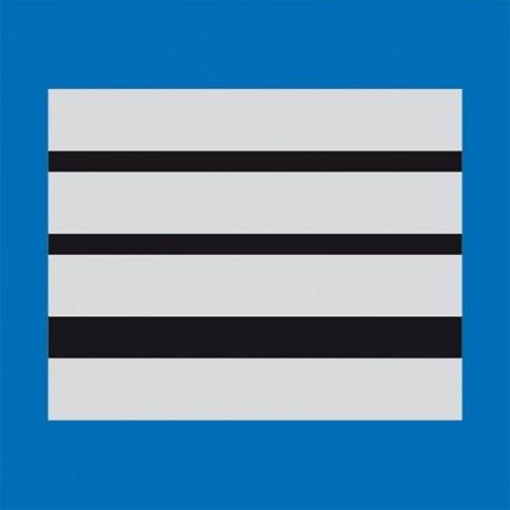 Grade plastifié Police Municipale Directeur