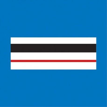 Grade plastifié Police Municipale Chef de Police